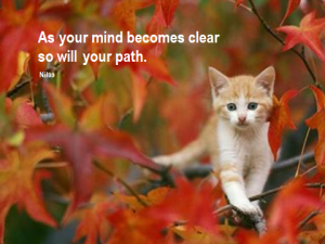 As your mind becomes clear, so will your path (Nilas)