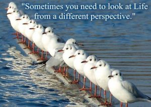 Sometimes you need to look at Life from a different perspective, 25-02-'13